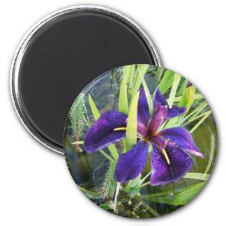 Agua púrpura/imanes negros de la flor del iris del imán redondo 5 cm