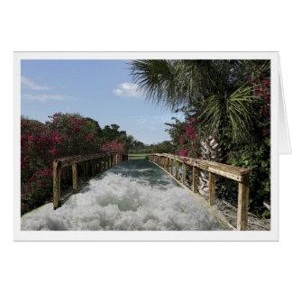 Agua sobre el puente tarjeta pequeña