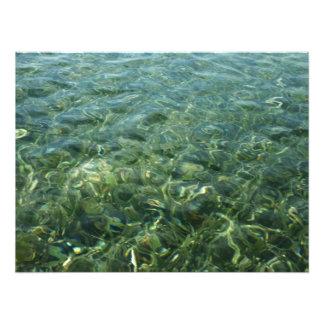 Agua sobre la impresión de la foto de la hierba de fotografía