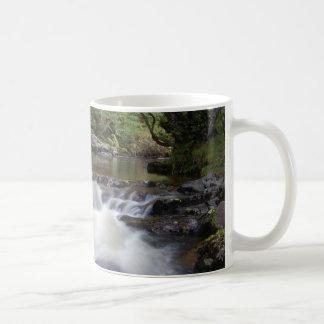 agua taza clásica
