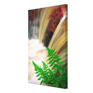 Agua termal ferrosa lienzo envuelto para galerías