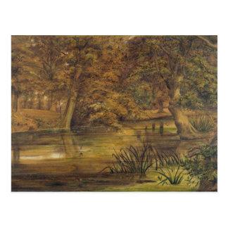 Agua trasera del Bratford, 1864 (w/c y lápiz o Postal