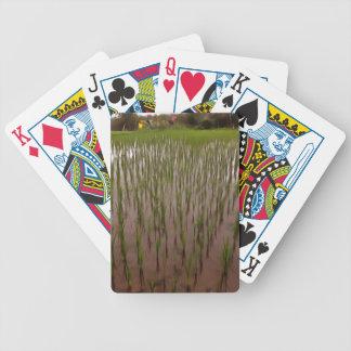 Agua y campo de arroz baraja de cartas bicycle