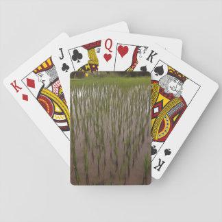 Agua y campo de arroz barajas de cartas