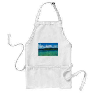 Agua y montañas tropicales de Hawaii Delantal