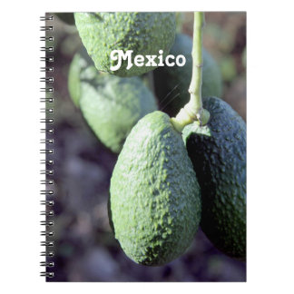 Aguacate Cuaderno