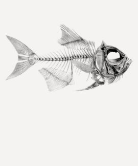 Aguafuerte esquelética de los pescados del vintage remera