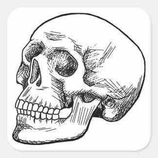 Aguafuerte humana del cráneo calcomania cuadradas personalizada