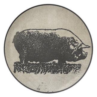 Aguafuerte rústica del cerdo plato de cena