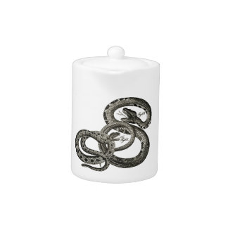Aguafuerte zoológica clásica - serpientes de