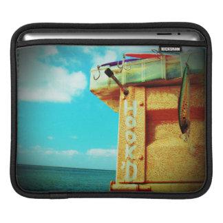 Aguamarina de la caja de aparejos de los pescados fundas para iPads