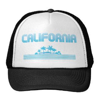AGUAMARINA de neón de las palmeras de California Gorro