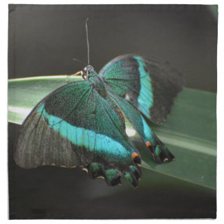 Aguamarina y mariposa negra servilletas de papel