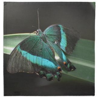 Aguamarina y mariposa negra servilletas