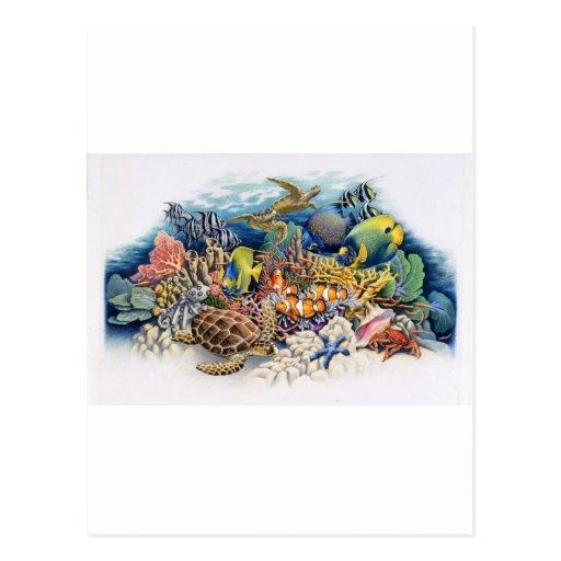 Aguas coralinas con los pescados tropicales postales