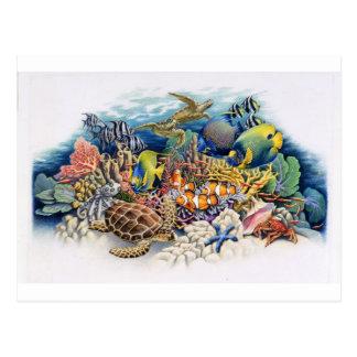 Aguas coralinas con los pescados tropicales tarjeta postal