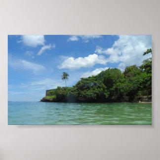Aguas de Hawaii Póster