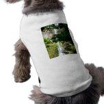 Aguas de manatial camisa de perro
