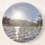 Aguas de Peacefull en el lago trout Posavasos Diseño