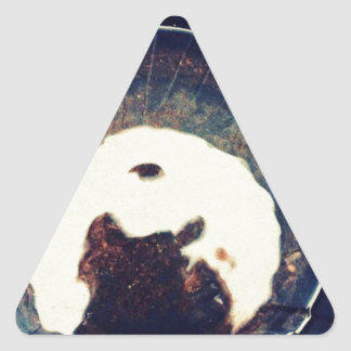 Aguas perturbadas pegatina triangular