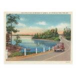 Aguas termales Arkansas del vintage Postales