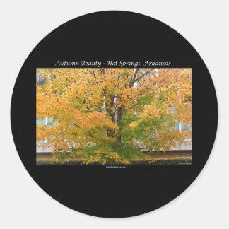 Aguas termales de la belleza del otoño, regalos de pegatina redonda