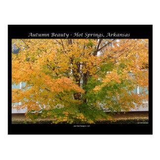Aguas termales de la belleza del otoño, regalos de postal