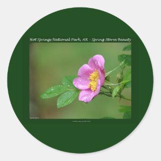 Aguas termales parque nacional, regalos color de pegatina redonda