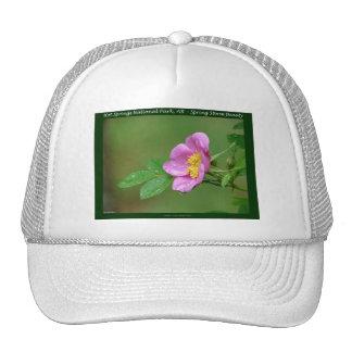 Aguas termales parque nacional, regalos color de r gorra
