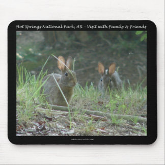 Aguas termales parque nacional, regalos salvajes d tapetes de raton