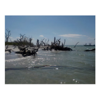 aguas tranquilas de la isla en el sudoeste FL Tarjeta Postal