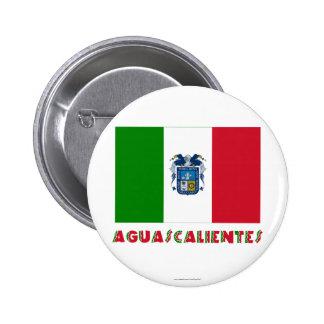 Aguascalientes Unofficial Flag Pins