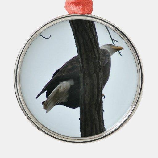 águila calva adorno navideño redondo de metal
