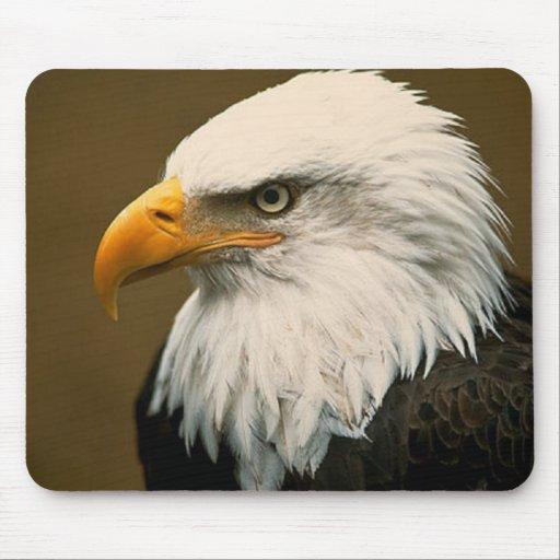 águila calva alfombrilla de ratones