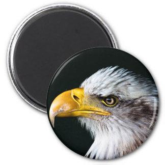 Águila calva americana imán redondo 5 cm