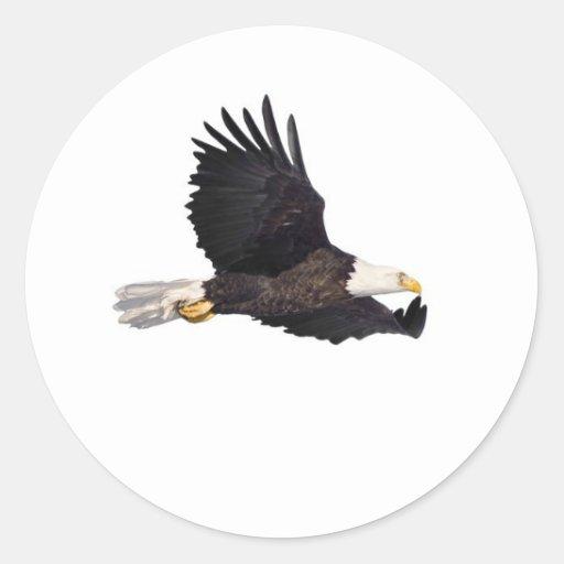 Águila calva americana pegatina redonda
