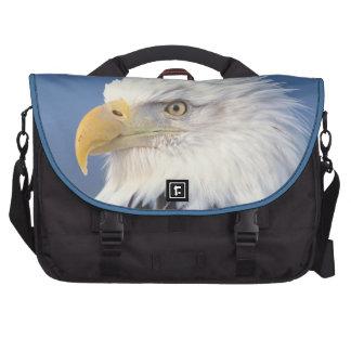águila calva, leuccocephalus del Haliaeetus, Bolsas Para Portatil