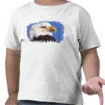 águila calva, leucocephalus del Haliaeetus, cierre Camisetas