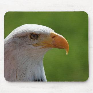 Águila calva mousepad