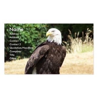 Águila calva tarjetas de visita