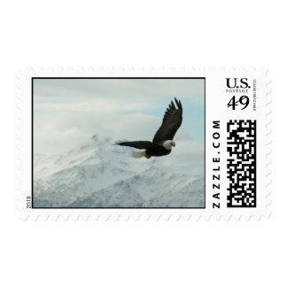Águila calva y montañas sello postal