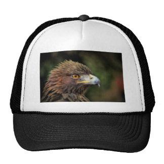 águila de oro gorros bordados