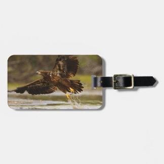 águila etiquetas de maletas