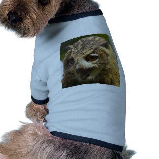 águila owl jpg camisa de mascota