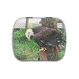águila que mira abajo de bosquejo de la perca frascos de dulces