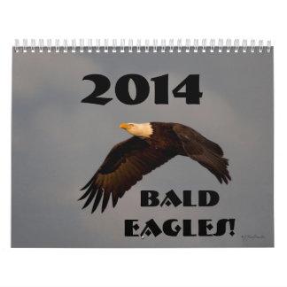Águilas calvas 2014 del calendario de pared de la