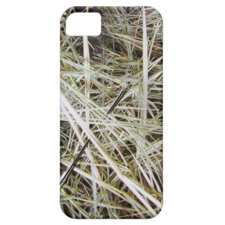 """""""aguja en caso de un haystack"""" iPhone 5 carcasas"""
