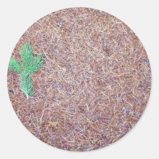 Agujas de Brown en la superficie con un verde minú Pegatinas