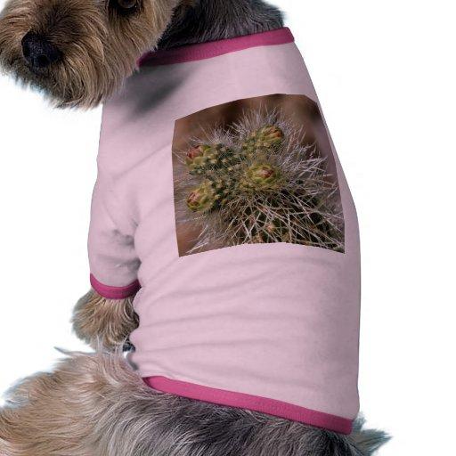 Agujas del cactus en el desierto de Anza Borrego Camisas De Perritos