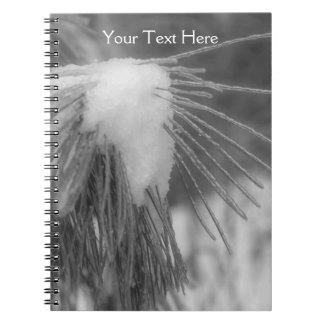 Agujas del pino en cuaderno de la naturaleza de la